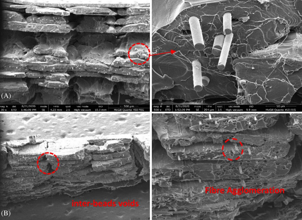 SEM images from the fracture surface of the team's pyrolyzed reinforced test specimen.